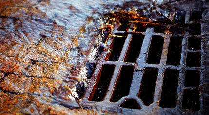 Blocked Drains Sydney